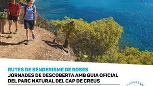rosesapeu (004)